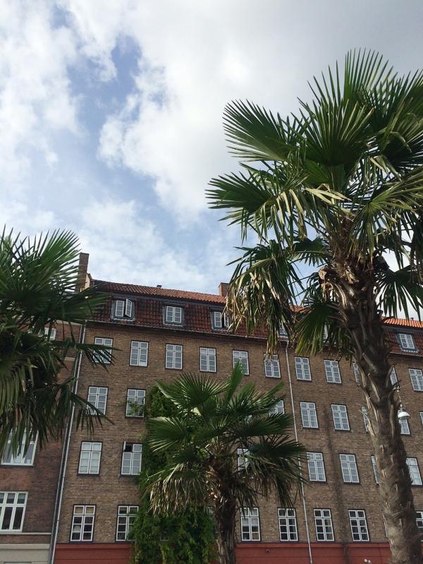 copenhagen-very-joelle-palmtree